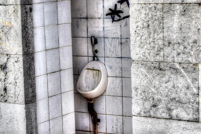 urinal - TheoHengelmolen (Titelbild); pixabay.com; Creative Commons CC0