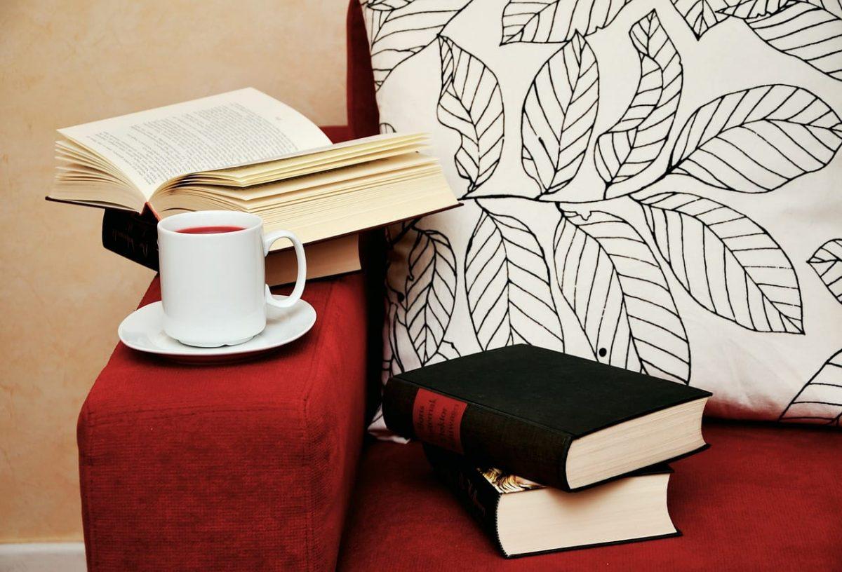 book read study sofa cup browse pixabay CC0