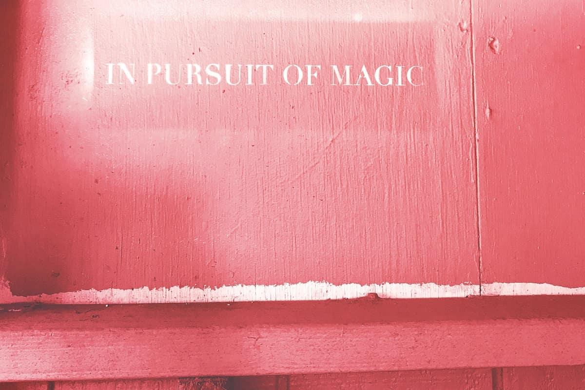 Auf der Suche nach dem Zauber. (Foto: Karly Santiago, Unsplash.com)