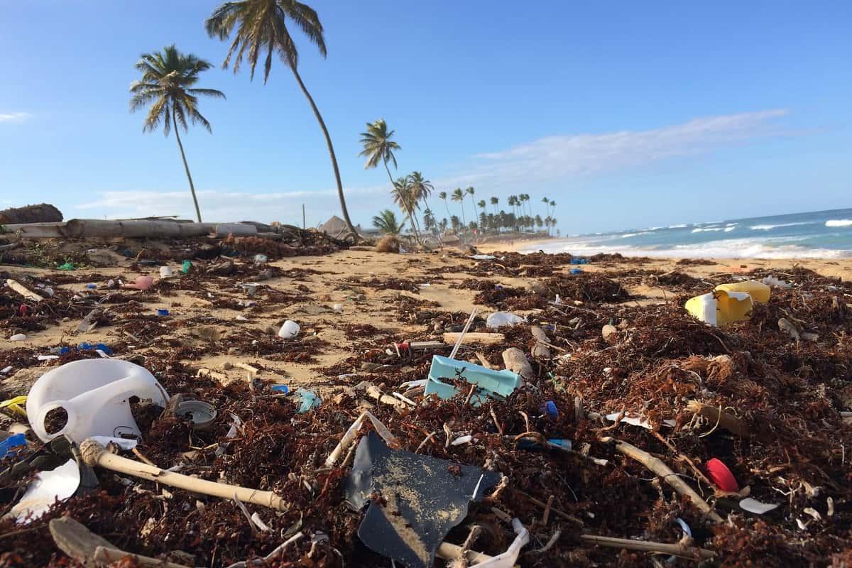 Billigheimer und Plastiktütenimperialismus